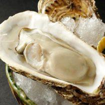厚岸の3年物 殻付き牡蠣